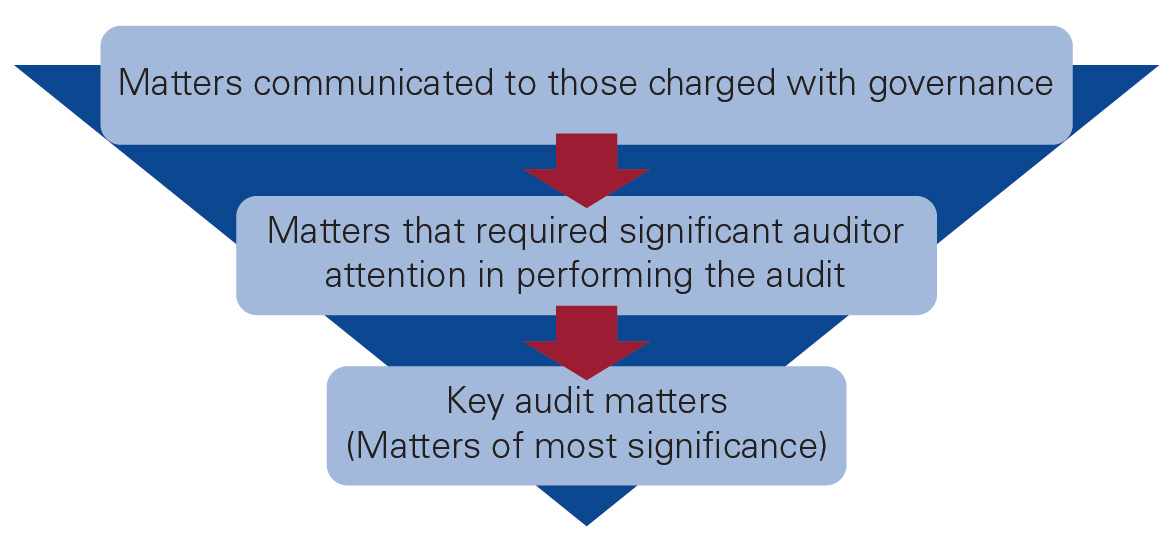 auditor reporting diagram
